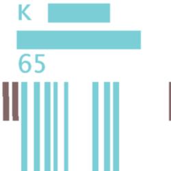Kammerorchester K65